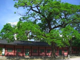 palace02.jpg